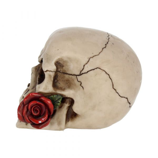 Rose From the Dead 15cm