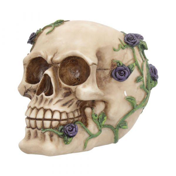 Purple Rose from Beyond 15cm